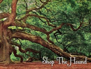 Save 10% storewide on purchases at Shop the Hound via Genealogy Bargains