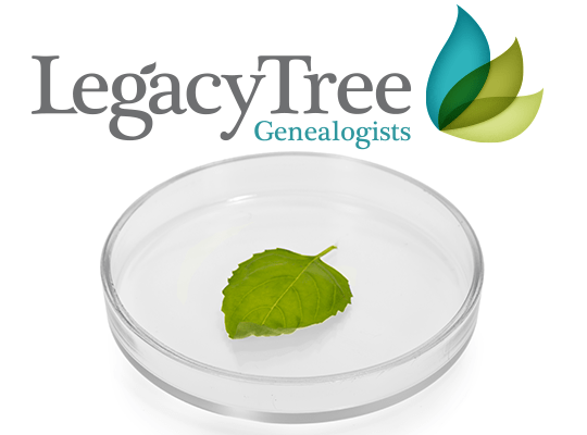 Win a FREE DNA Analysis valued at $350 from Legacy Tree Genealogists!