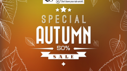 Save 50% and more on e-books to help you write and preserve your family stories during the Autumn Flash Sale at Legacy Tale!
