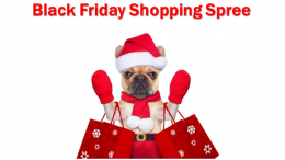 Genealogy Bargains is giving away a $500 Amazon Gift just in time for Black Friday shopping!