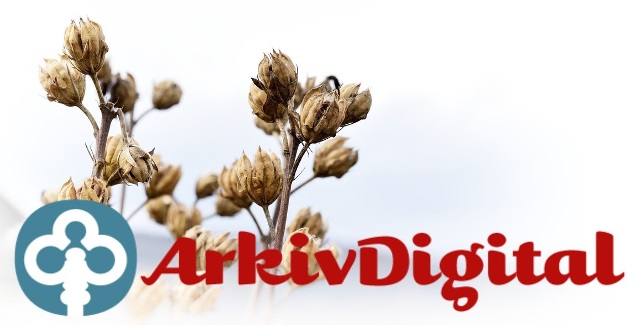 FREE ACCESS WEEKEND at ArchivDigital! Get access to AMAZING records for Swedish genealogy and family history research!