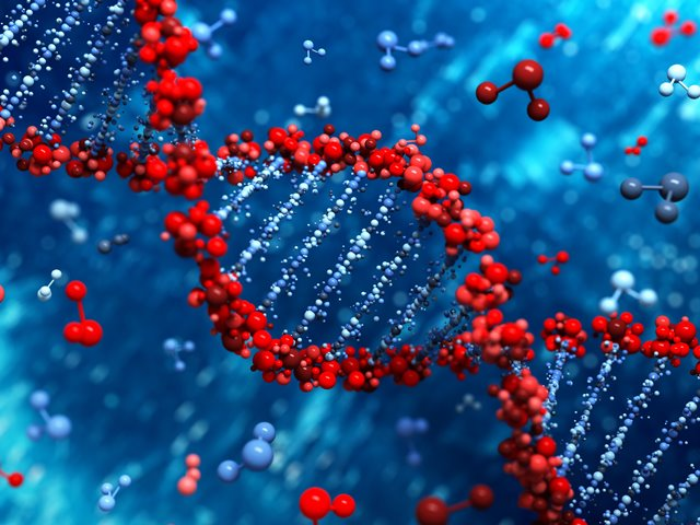 National DNA Day Sales Update from Genealogy Bargains