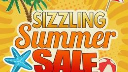 Sizzling Summer Sale - Save 30% on The Write Stuff Genealogy Intensive by Lisa Alzo - get the details at Genealogy Bargains!
