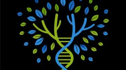 """FREE WEBINAR The Family DNA Project presented by Nicka Smith, Friday, June 8th, 1:00 pm Central - """"Genetic genealogy truly bears fruit if multiple family members on multiple lines of the family have tested. Learn how to create and manage a project for your family while being mindful of privacy and sensitive issues that may arise."""""""