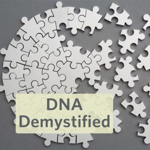 DNA Demystified Interested in exploring DNA testing for genealogy but confused by the technical buzzwords? Have your test results but wonder how it actually applies to your family history? Our DNA expert will sort out the differences between X-DNA and mitochondrial DNA, explain admixture and phasing, and guide you through the mysteries of haplogroups, chromosome maps, SNPs, and more.
