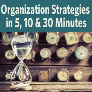Organization Strategies in 5, 10 & 30 Minutes (Video Download): In this presentation, discover great ways to manage your research. A timed approach is a great way to replace that feeling of being overwhelmed with a sense of accomplishment, and the nine ideas presented here will be a great jumping-off point for you to come up with your own.